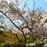 2014 Japan - Dag 7 - tom-SAM_0475-0045.JPG