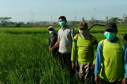 Waspada, Mencampur Air dan Pestisida yang Benar