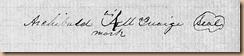 Alexander McQuaige Signature