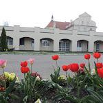 2015.04.21.,Klasztor w Ostrzeszowie, fot.s.A (96).JPG