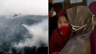 Fumée des feux de forêt en Asie du Sud-Est: 100.000 décès prématurés