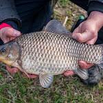 20150418_Fishing_Ostrog_047.jpg