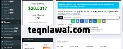 مواقع الربح من الانترنت - paidera