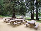 Picnic tables at Harvey West Park