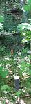 IMG_9482 - Arbeitskopie 2.jpg