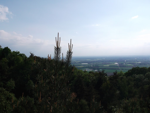 Odenwald 2016