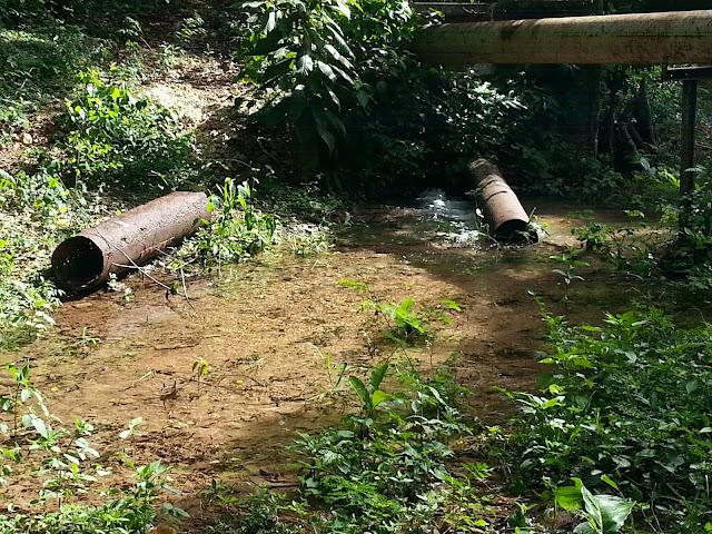 Consorcio Azucarera Central bota miles de galones de agua en La Guázara