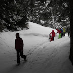 Vescasa sotto la neve