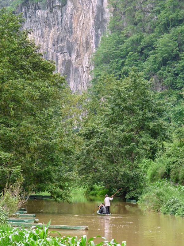 Chine . Yunnan BA MEI 2 - P1260943.JPG