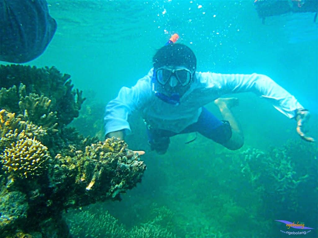 Pulau Harapan, 16-17 Mei 2015 Olympus  27