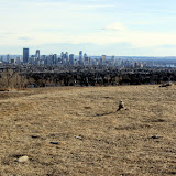 View from Nose Hill