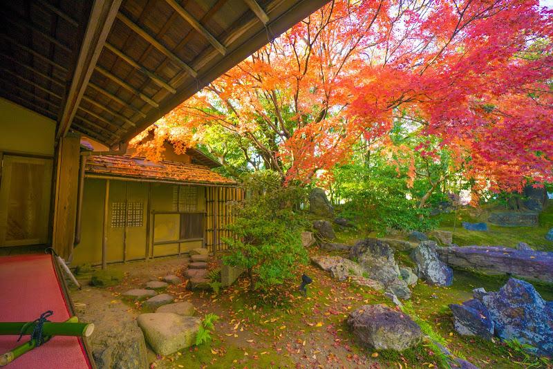 京都 圓徳院 紅葉 写真3