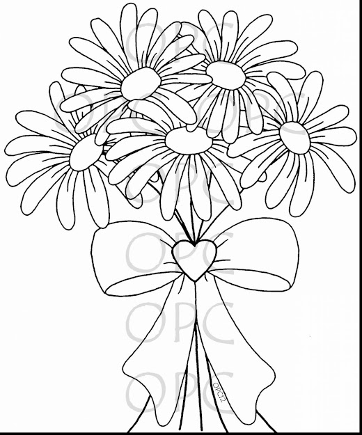 Surprising Gerber Daisy Flower Coloring Pages With Daisy Coloring Pages And Daisy  Coloring Pages Girl Scouts