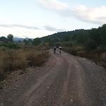 20111204-Más sendas por Alfondeguilla