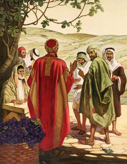 trong vườn nho của Chúa