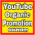 Provide you unique youtube organic promotion fast