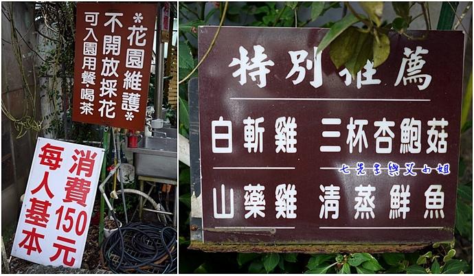 3 苗榜海芋園
