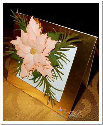 Soft Pink Poinsettia Card-Mary Ann_FB2018