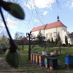 2015.04.21.,Klasztor w Ostrzeszowie, fot.s.A (81).JPG
