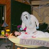 2009 Halloween - DSCN0898.JPG