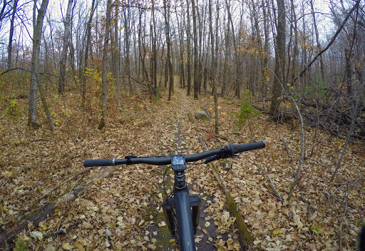 Twin Lakes singletrack