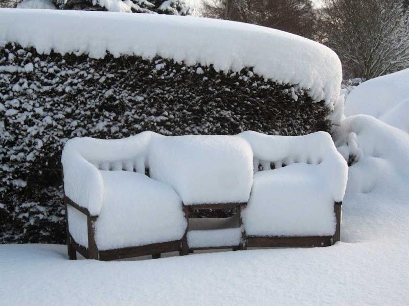 SnowBR4
