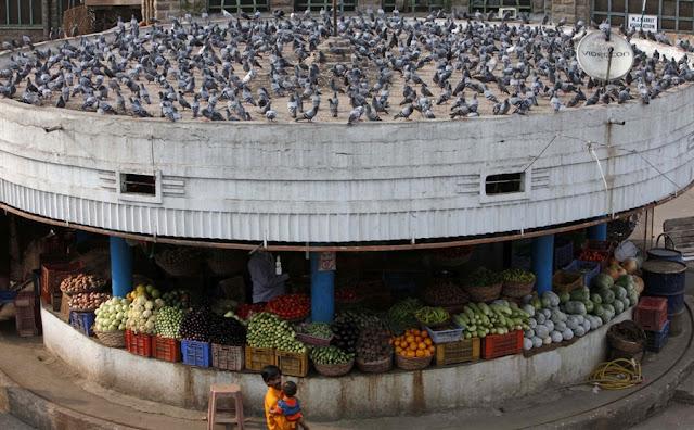 Hyderabad - Rare Pictures - tumblr_mb725xJYZj1qa944oo1_1280.jpg