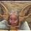 Claire Eddy's profile photo