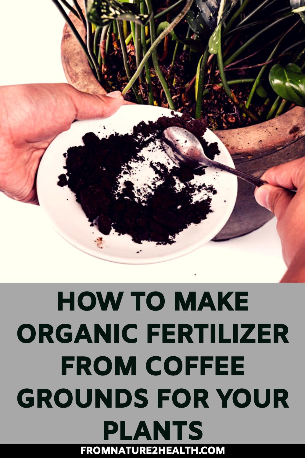 How to Make Organic Fertilizer from Coffee Grounds for Your Plants