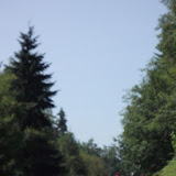 Skookumchuck River 2012 - DSCF1775.JPG