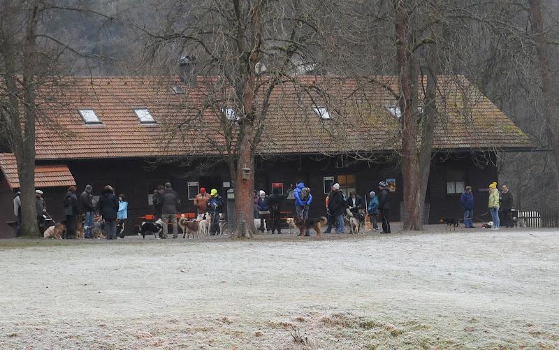 20140101 Neujahrsspaziergang im Waldnaabtal - DSC_9877.JPG