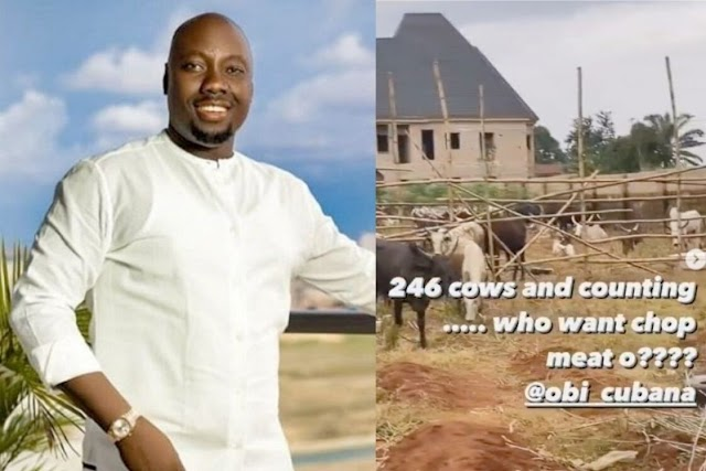 OBI CUBANA RECEIVES 260 COWS FROM FRIENDS FOR LATE MOTHER'S BURIAL