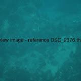 DSC_2376.thumb.jpg