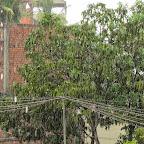 Siem Reap - ein Regentag