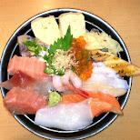 huge chirashi bowl at sushi zanmai in Roppongi in Tokyo, Tokyo, Japan