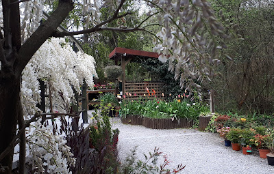 Primavera en la Tienda de Plantas del Jardín Botánico de Gijón.