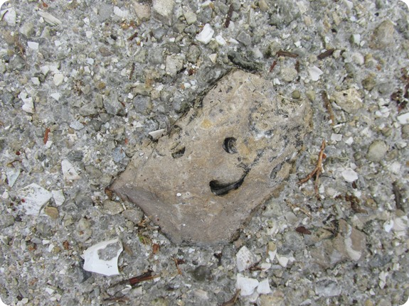 99 Happy Face Rock