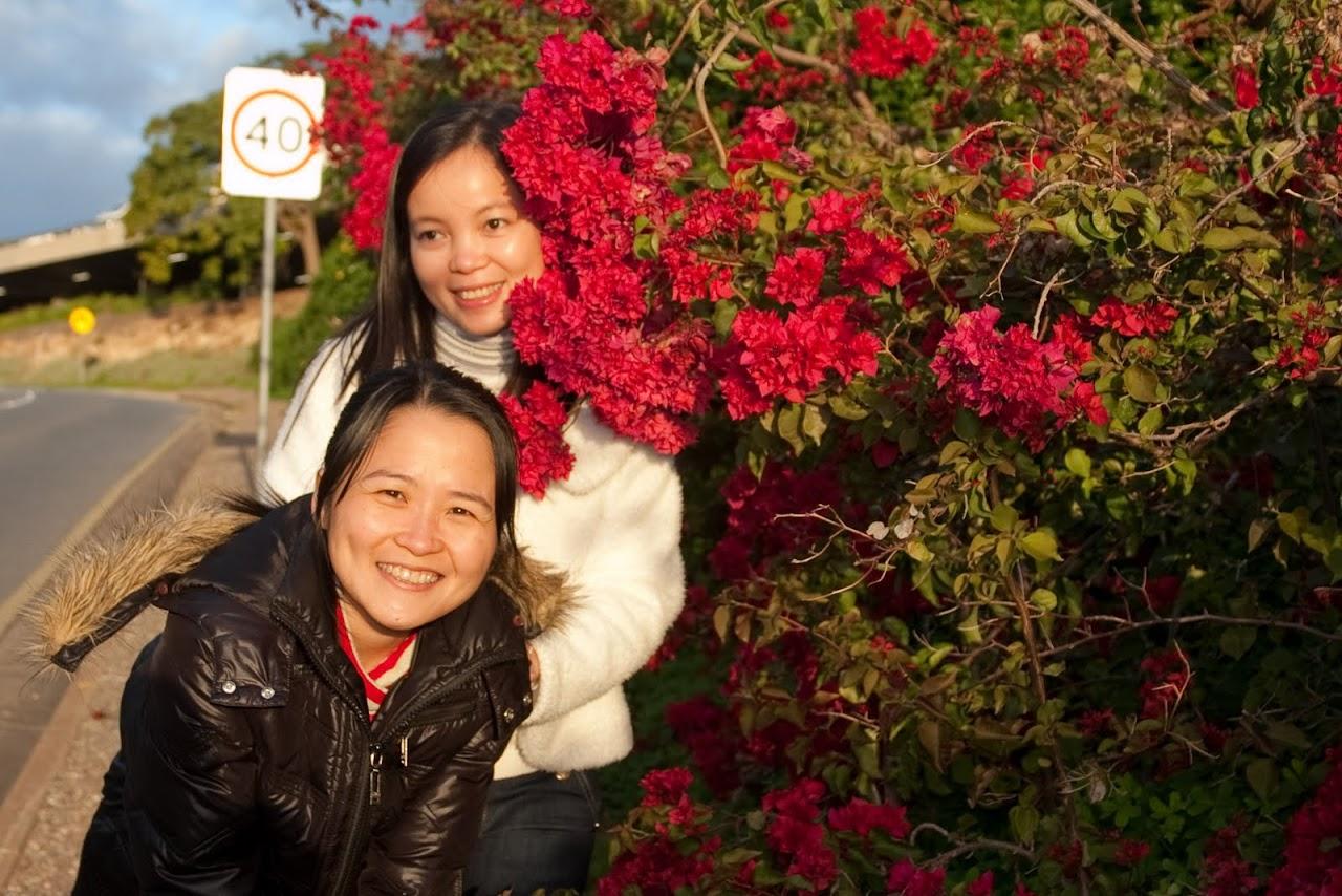 2010 06 13 Flinders University - IMG_1457.jpg