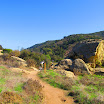 laguna_coast_wilderness_IMG_2224.jpg