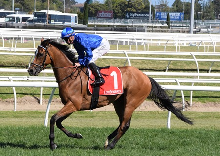 caulfield stakes_hartnell 3