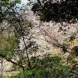 2014 Japan - Dag 7 - tom-SAM_0461-0031.JPG