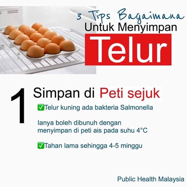 INFO GRAFIK : 3 Cara Yang BETUL Simpan Telur