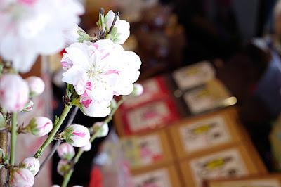 コーヒーマーケットバンカ野田店:岡山市北区野田