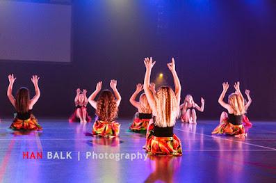 Han Balk Voorster Dansdag 2016-4465.jpg