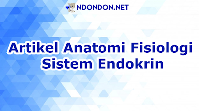 Artikel Anatomi Fisiologi Sistem Endokrin