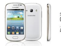 Cara Mudah Root Samsung Galaxy Fame Tanpa PC