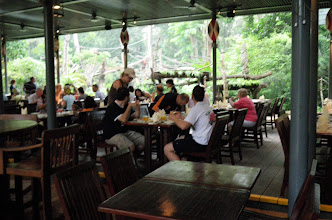 Photo: You can see the Orang viewing platform at the back of the picture.  There is no barrier between the patrons and the Orangs
