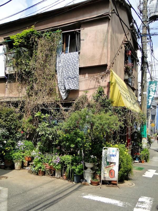2014 Japan - Dag 10 - roosje-DSC01821-0055.JPG