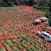 MUNDO REGISTRA MAIOR Nº DIÁRIO DE MORTES POR COVID, E TOTAL DE VÍTIMAS PASSA DE 1,4 MILHÃO