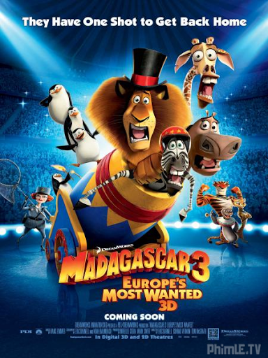 Phim Madagasca 3: Thần Tượng Châu Âu - Madagascar 3: Europe's Most Wanted - Lồng tiếng